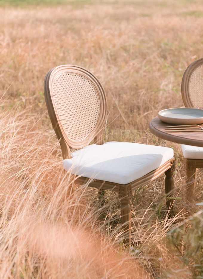 Louis Chairs and Bench Set by Le Scarlet Rental - 015