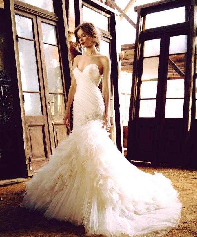 Lazaro by Designer Bridal Room Bridestorycom