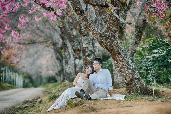 Kew Mae Pan pre wedding in Chiangmai by Lovedezign Photography - 011