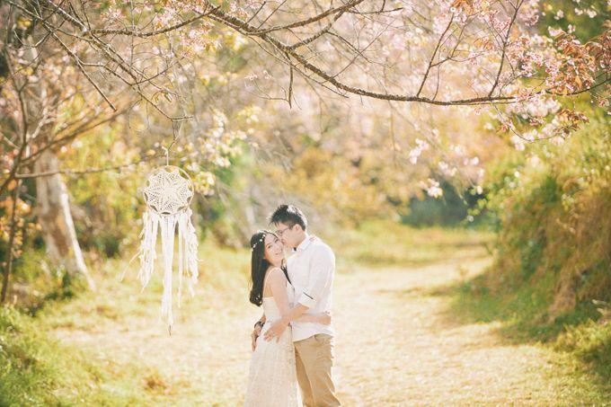 Kew Mae Pan pre wedding in Chiangmai by Lovedezign Photography - 012