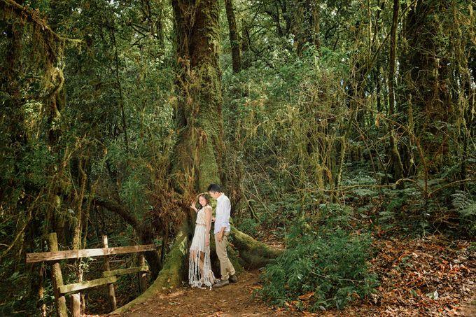 Kew Mae Pan pre wedding in Chiangmai by Lovedezign Photography - 010