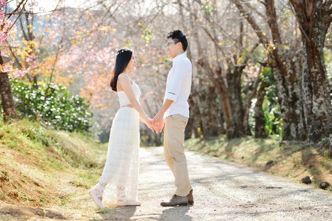 Kew Mae Pan pre wedding in Chiangmai by Lovedezign Photography - 007