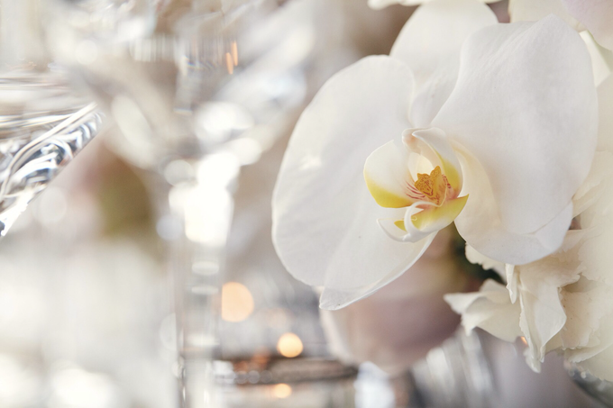 Private island wedding  by lusso Events - 013