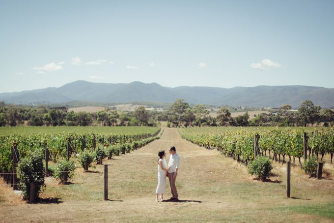 Prewedding Shoot Conquering Different Natural Sights of Victoria Australia by fire, wood & earth - 015