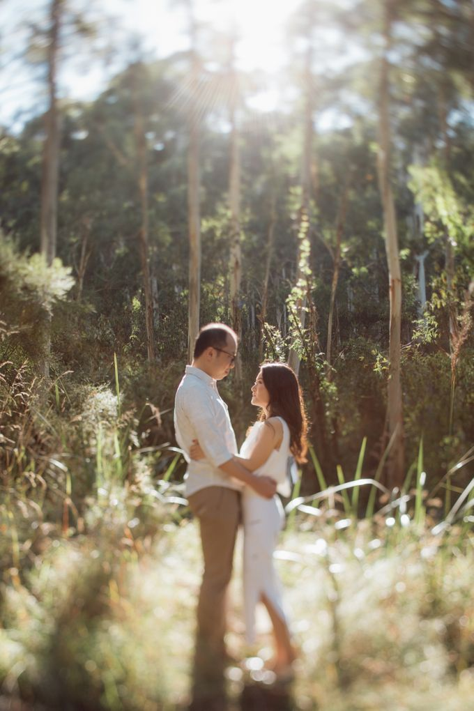 Prewedding Shoot Conquering Different Natural Sights of Victoria Australia by fire, wood & earth - 007