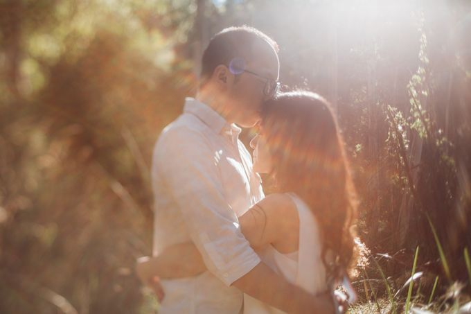 Prewedding Shoot Conquering Different Natural Sights of Victoria Australia by fire, wood & earth - 008
