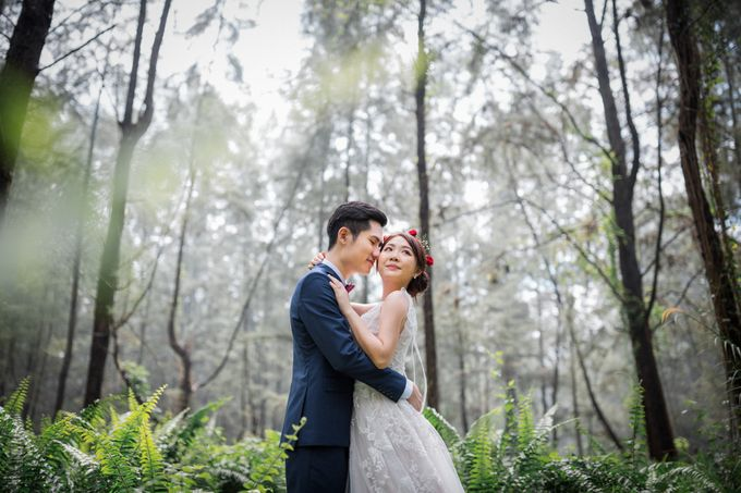 Pre-Wedding Photography by DTPictures - 003