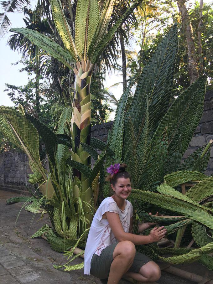 Dramatic Backdrops by Make A Scene! Bali - 007