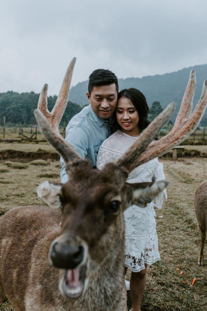 Prewedding Nico & Hanna by Monchichi - 020