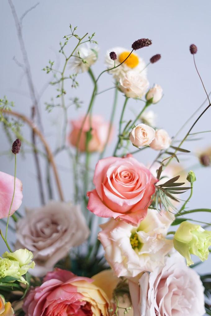 Pastel Pallete by Mfreshflowers - 007