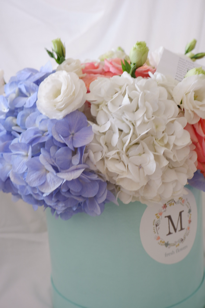 All about Hydrangea by Mfreshflowers - 002