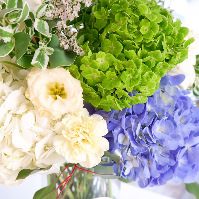 All about Hydrangea by Mfreshflowers - 007
