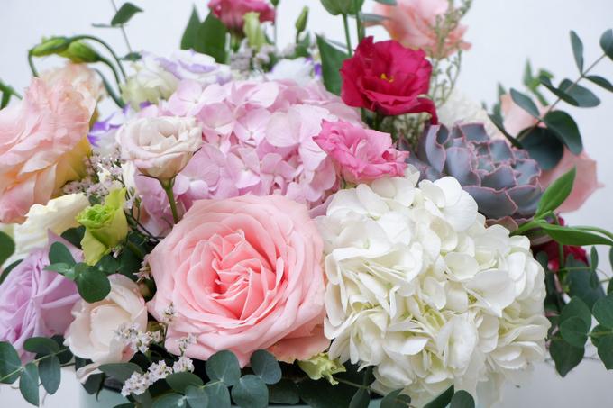 All about Hydrangea by Mfreshflowers - 009