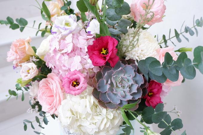 All about Hydrangea by Mfreshflowers - 010