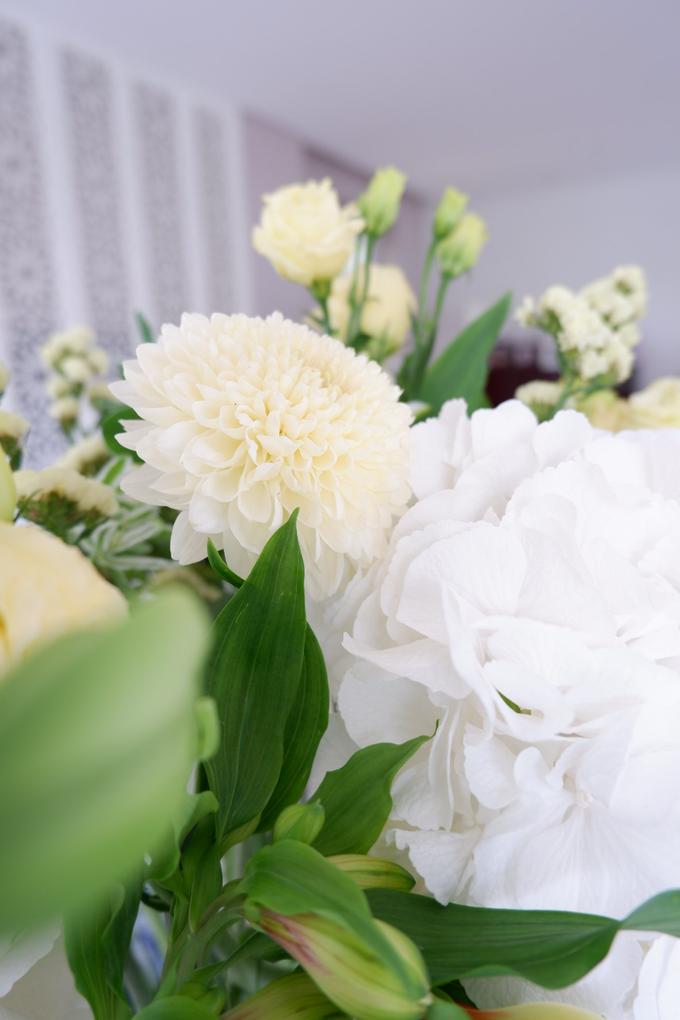 All about Hydrangea by Mfreshflowers - 019
