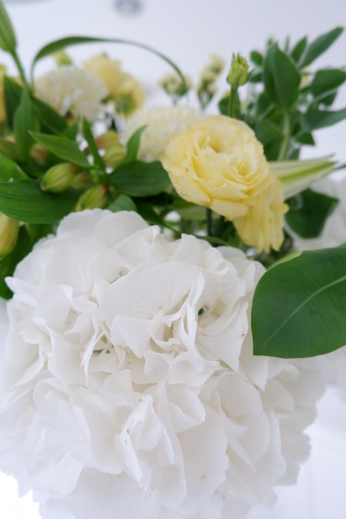 All about Hydrangea by Mfreshflowers - 020