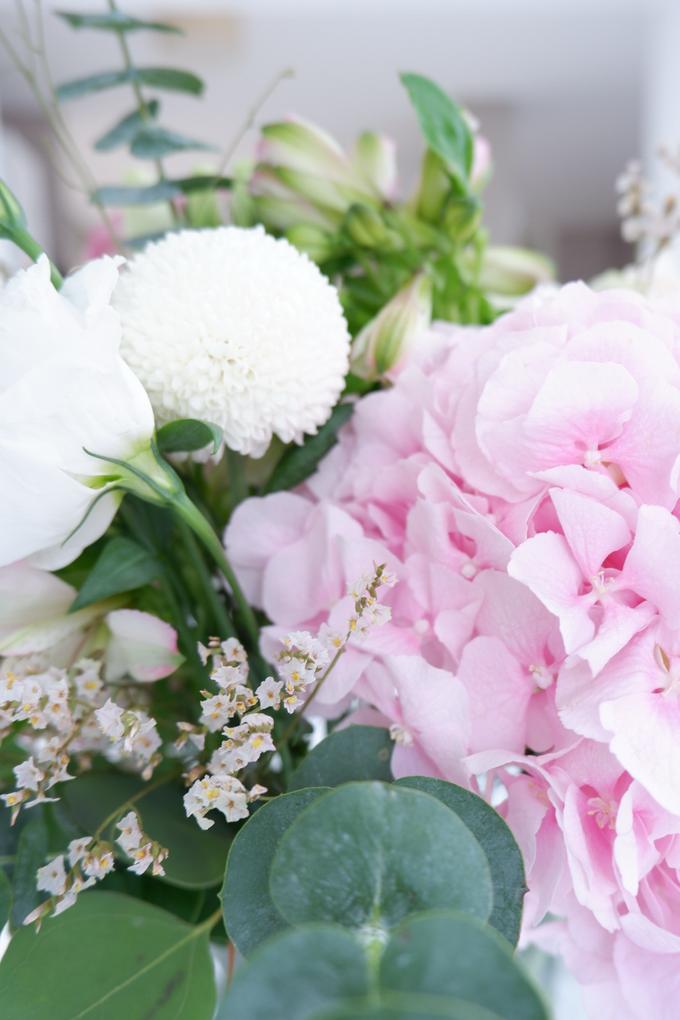 All about Hydrangea by Mfreshflowers - 025