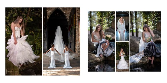 Wedding Photography and Video by davidcliftstudios - 012