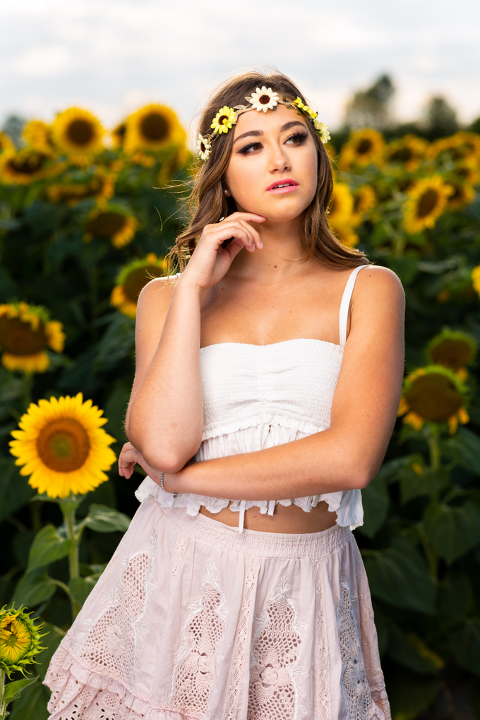 Sunflower  by Motion D Photography - 004