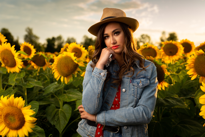 Sunflower  by Motion D Photography - 005