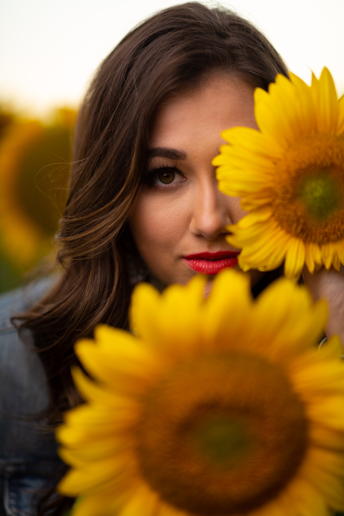 Sunflower  by Motion D Photography - 006