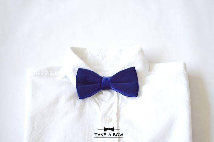 Pre-Tied Bow Tie by Take A Bow Tie - 004