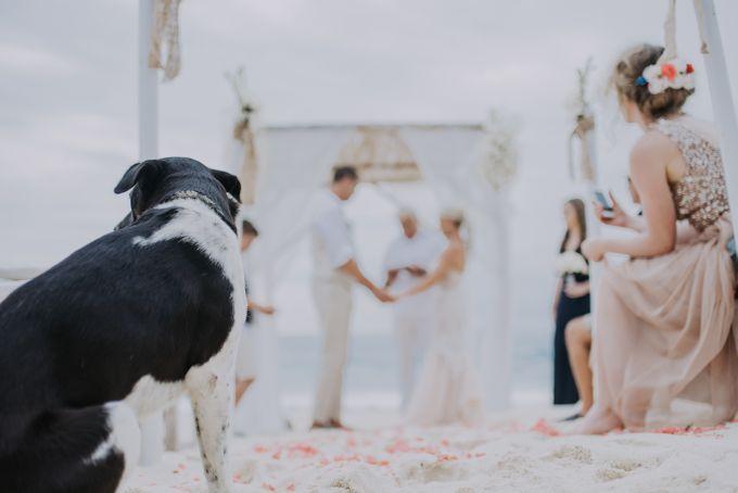 Wedding Destination Edward & Elly by Aka Bali Photography - 015
