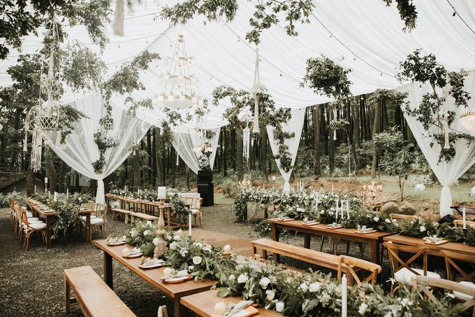Intimate wedding by Pandora Organizer - 001