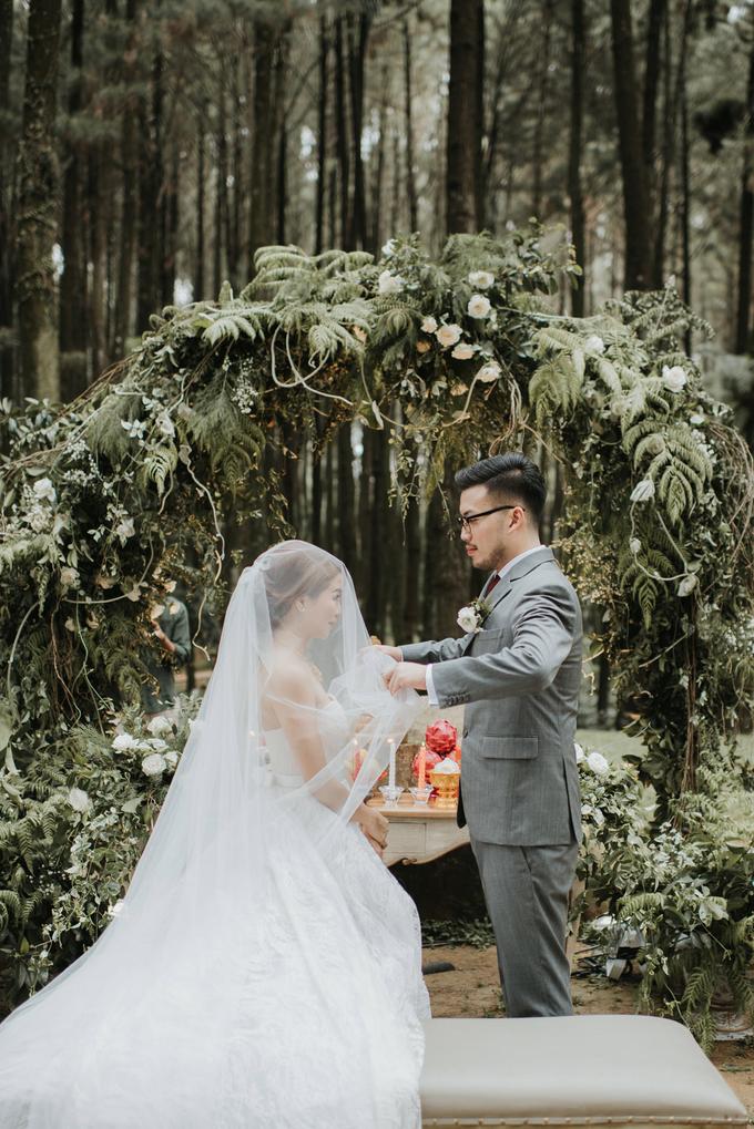 Intimate wedding by Pandora Organizer - 005