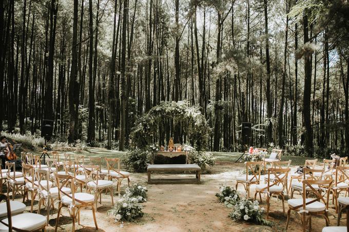 Intimate wedding by Pandora Organizer - 006