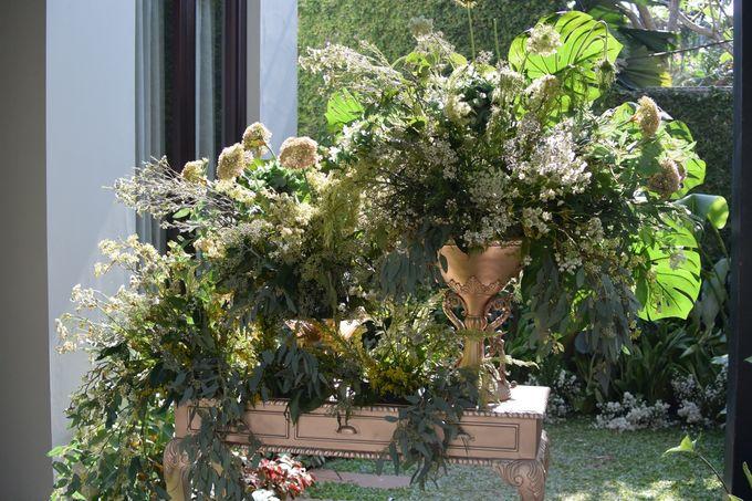 Conservatory Darling by PARC De AYODYA - 002