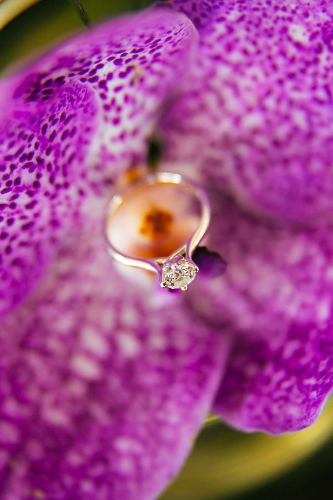 Wedding And Engagement by Jaypee Noche - 036