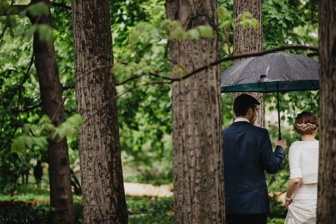 Olga and Volker Rainy Day Wedding by Dasha Elfutina - 011