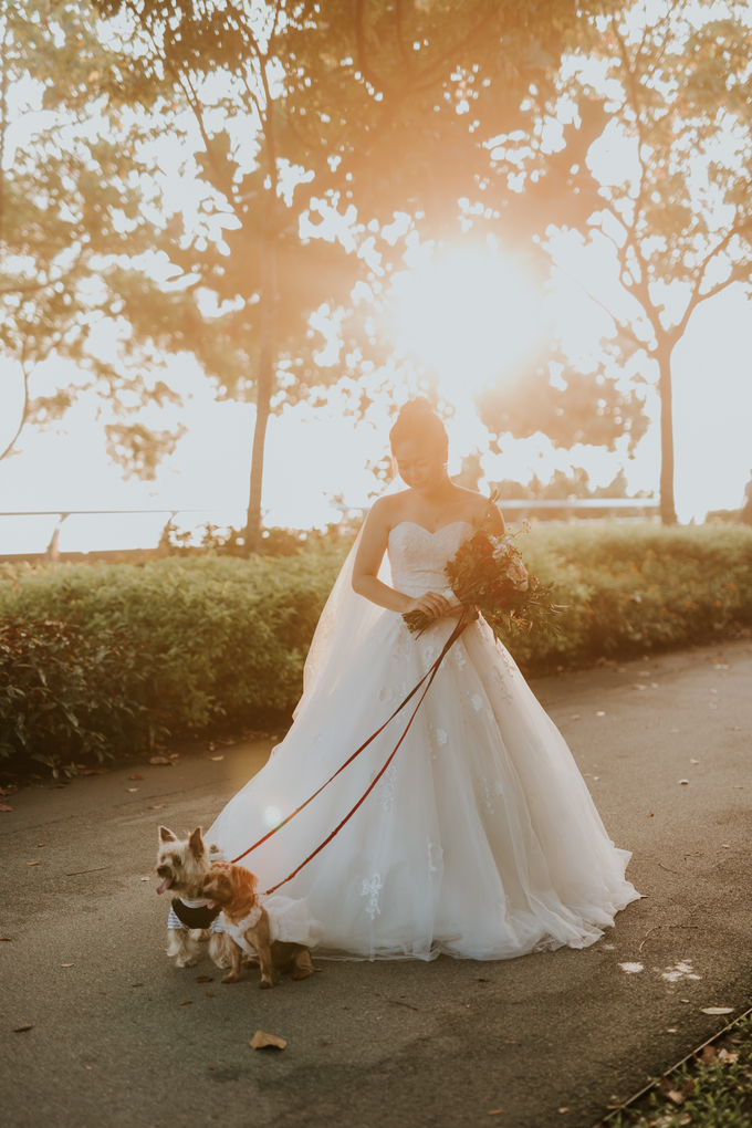 Wanxiang & Averil by Pixioo Photography - 025