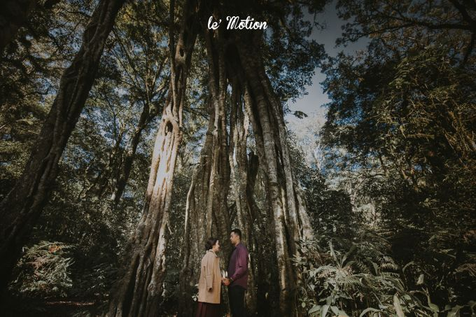 A Romantic Back-To-Nature Journey of Feli & Reza by Le Motion - 009