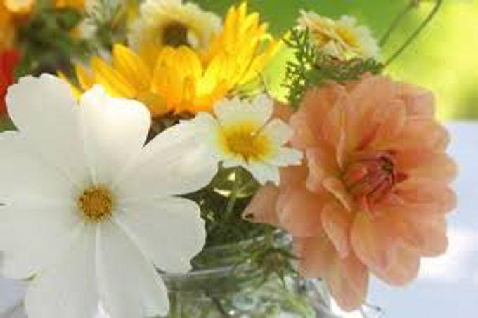 Bouquets, Corsages & Boutonnieres by Dorcas Floral - 014