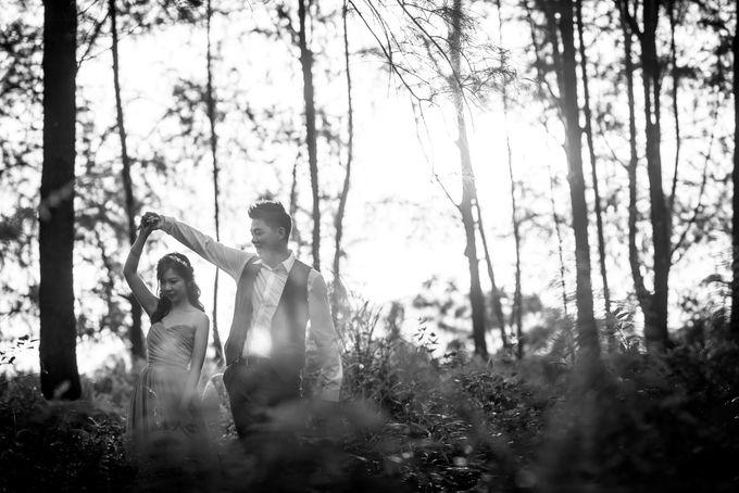 Pre-wedding - Qing Hong & Vivian by A Merry Moment - 003