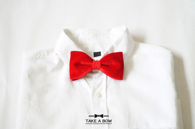 Pre-Tied Bow Tie by Take A Bow Tie - 007
