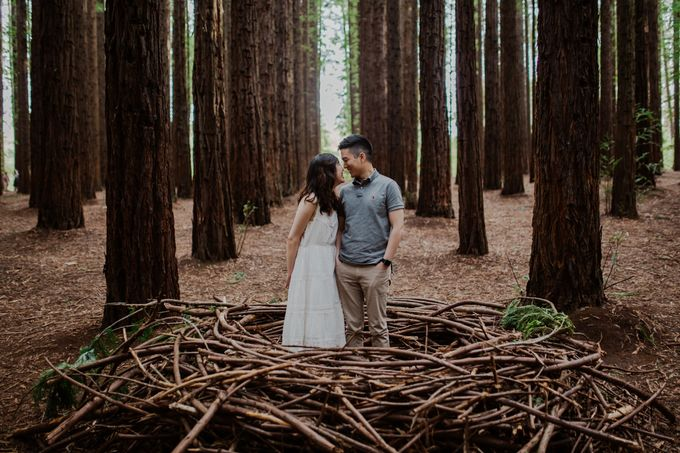 Marvelous Redwood Forest Wedding Anniversary in Warburton Melbourne Australia by fire, wood & earth - 003