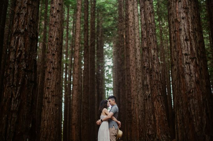Marvelous Redwood Forest Wedding Anniversary in Warburton Melbourne Australia by fire, wood & earth - 027