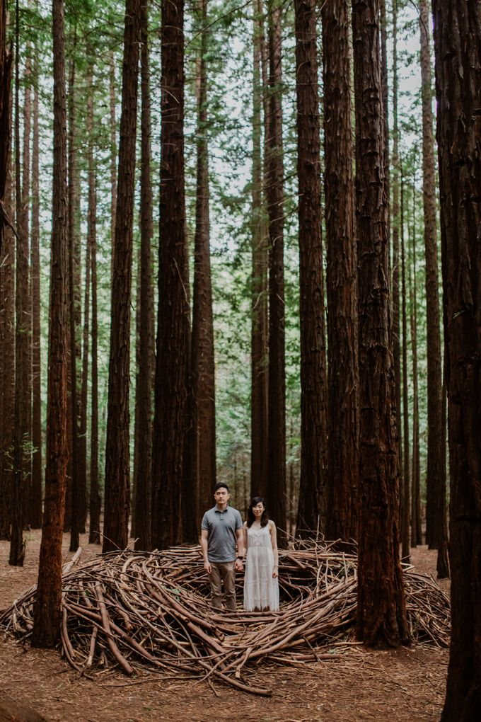 Marvelous Redwood Forest Wedding Anniversary in Warburton Melbourne Australia by fire, wood & earth - 033