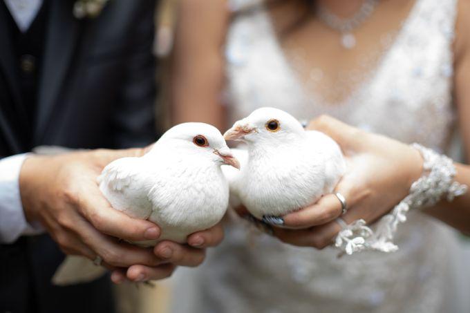 Intimate wedding chandra & lyana by Oscar Organizer - 005
