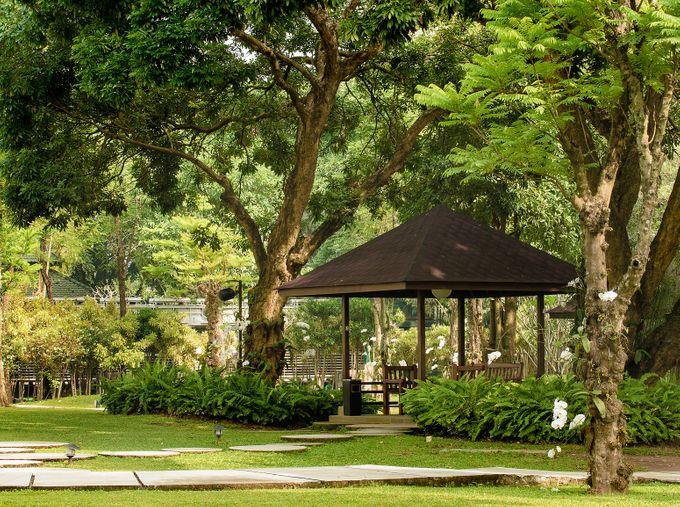 The Royal Garden by Royal Ambarrukmo Yogyakarta - 013