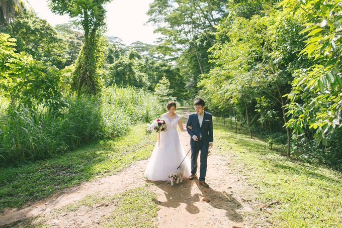 Wedding Day - Samuel and Hazel by TangYong Hair & Makeup - 022