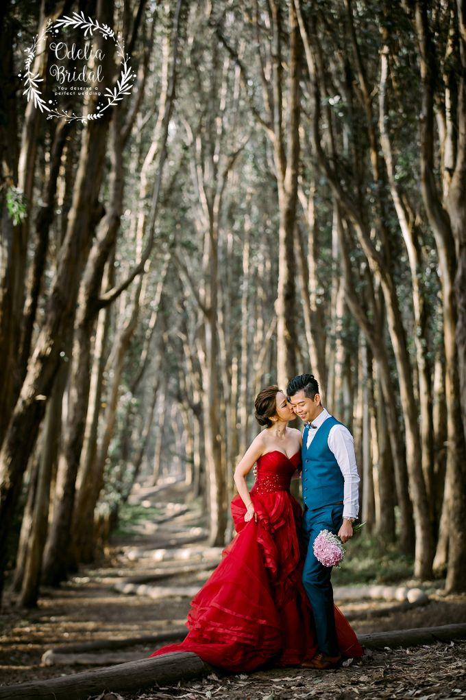 San Francisco pre wedding photography by Odelia Bridal - 009
