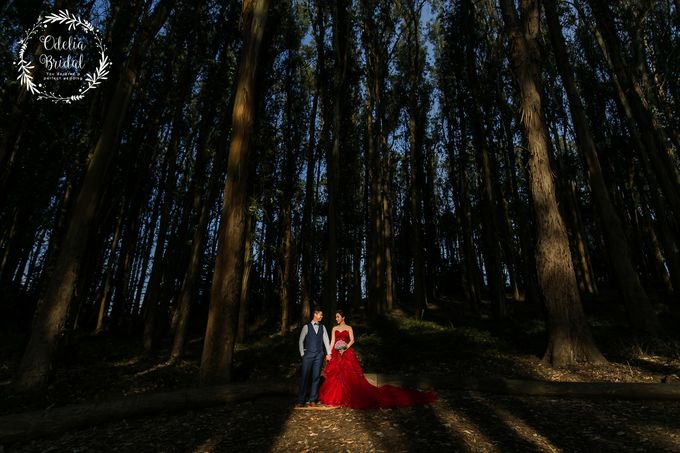 San Francisco pre wedding photography by Odelia Bridal - 011