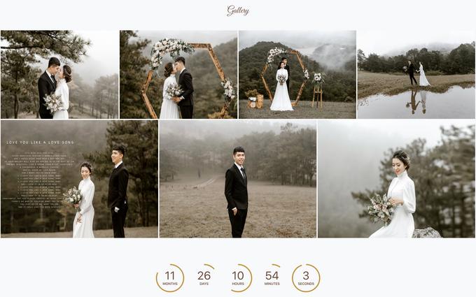 Thomas & Vivien - Bronze Package by Wedbio.com - elegant wedding website & online rsvp - 002