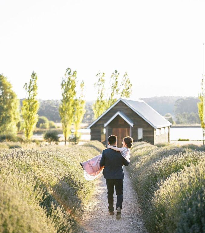 Wedding Eka & Livia by Hanny N Co Orchestra - 001