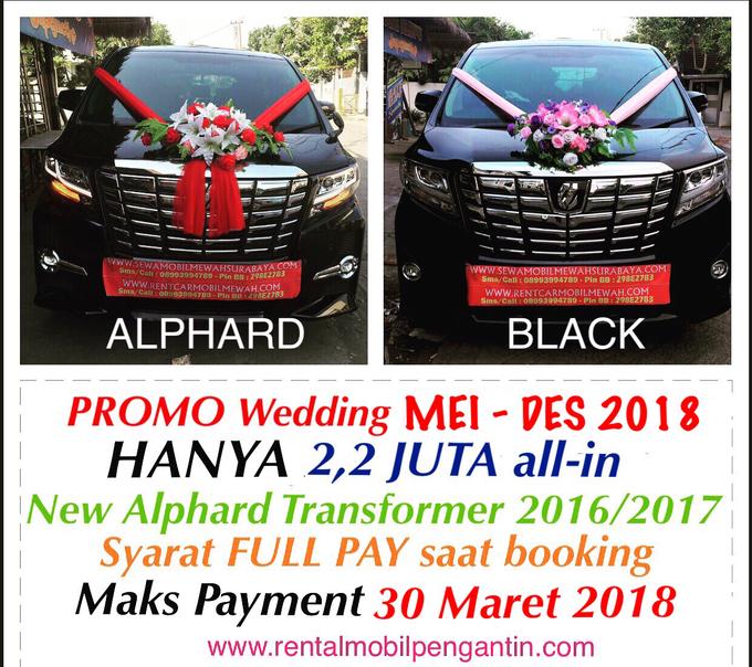 Sewa Mobil Alphard Surabaya, Sentosa Jaya Rent VIP by SENTOSA JAYA VIP WEDDING CARS SURABAYA - 007