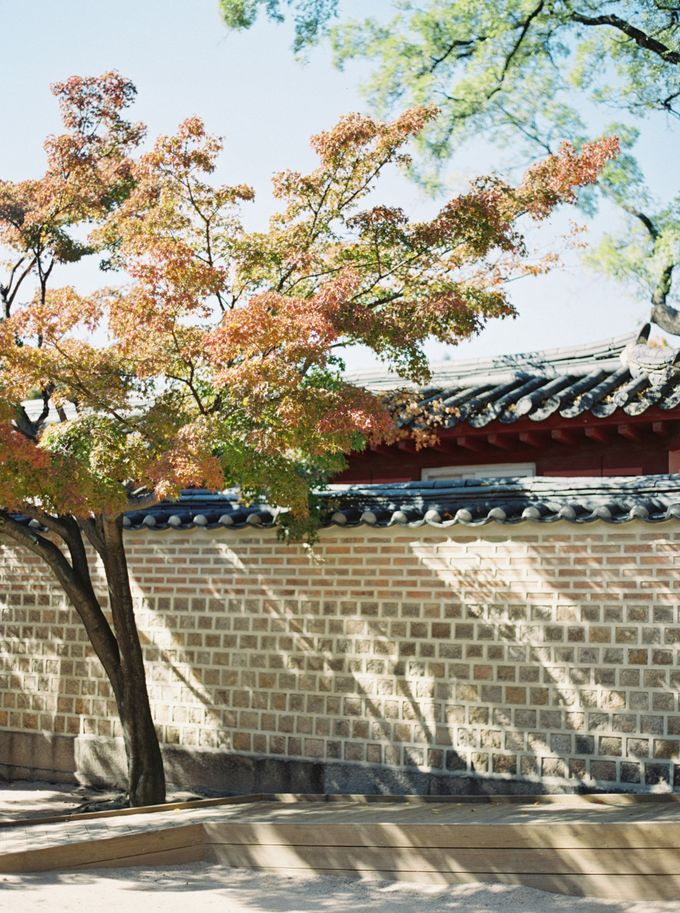 Fall Wedding Inspiration at Deoksugung by Honour and Blessing Events - 022